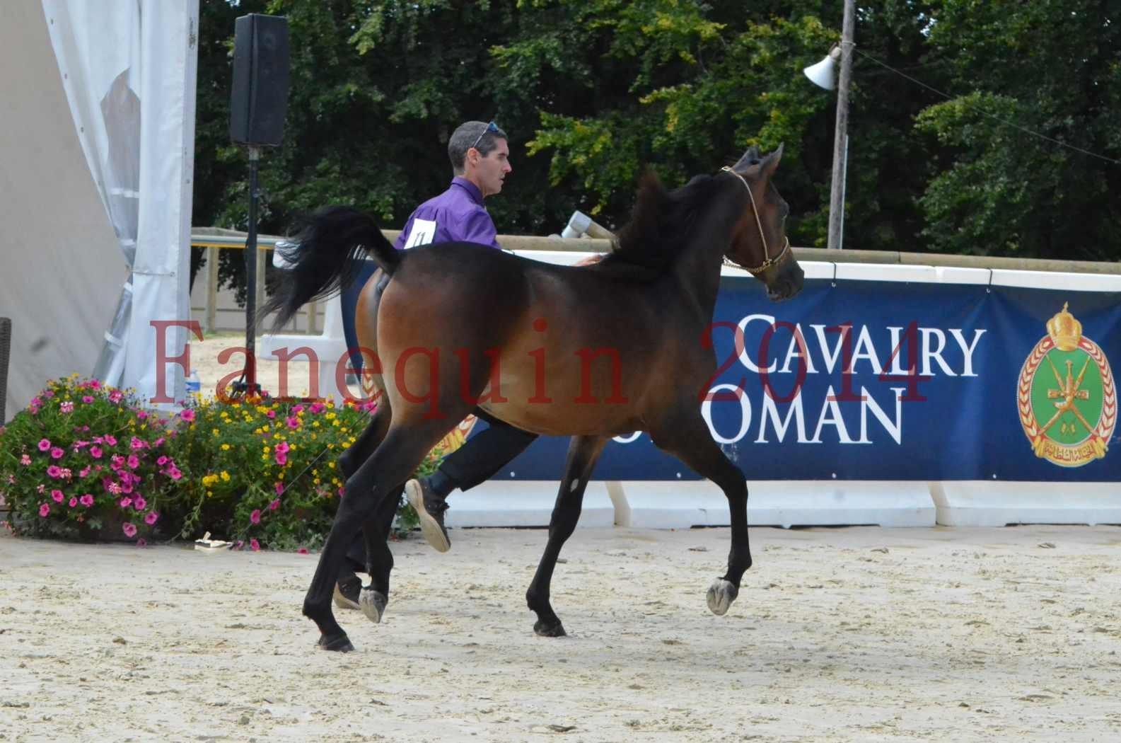Championnat de FRANCE 2014 - Amateurs - SH FARAJAA - 20