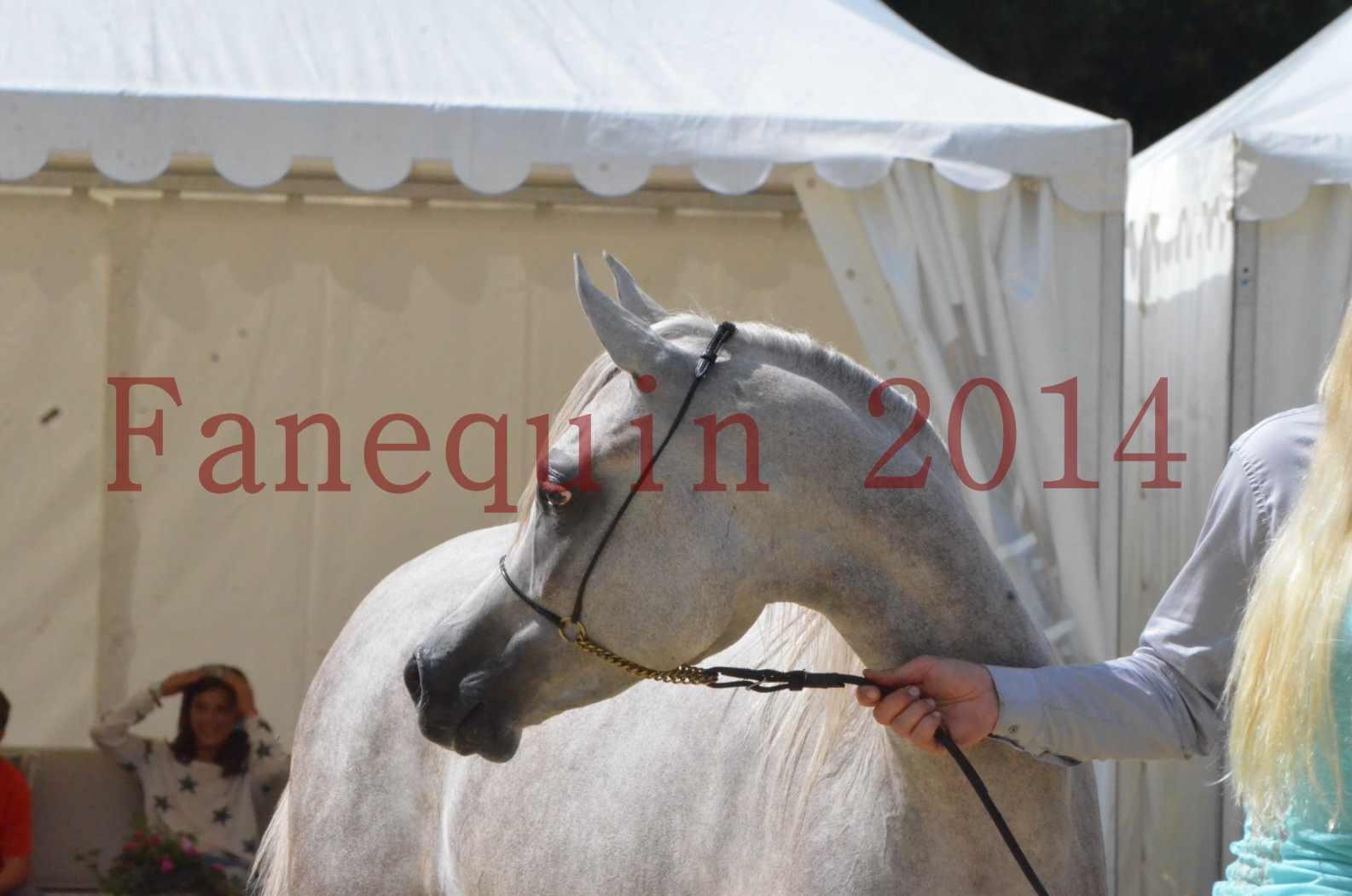 Championnat de FRANCE 2014 - Amateurs - VOLODIA DE LAFON - 090