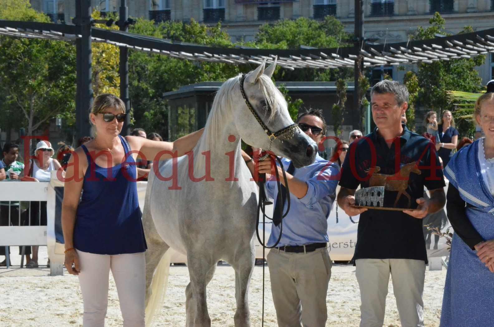 Concours national de Nîmes 2014 - Championnat Femelles Juniors - VOLODIA DE LAFON - 22