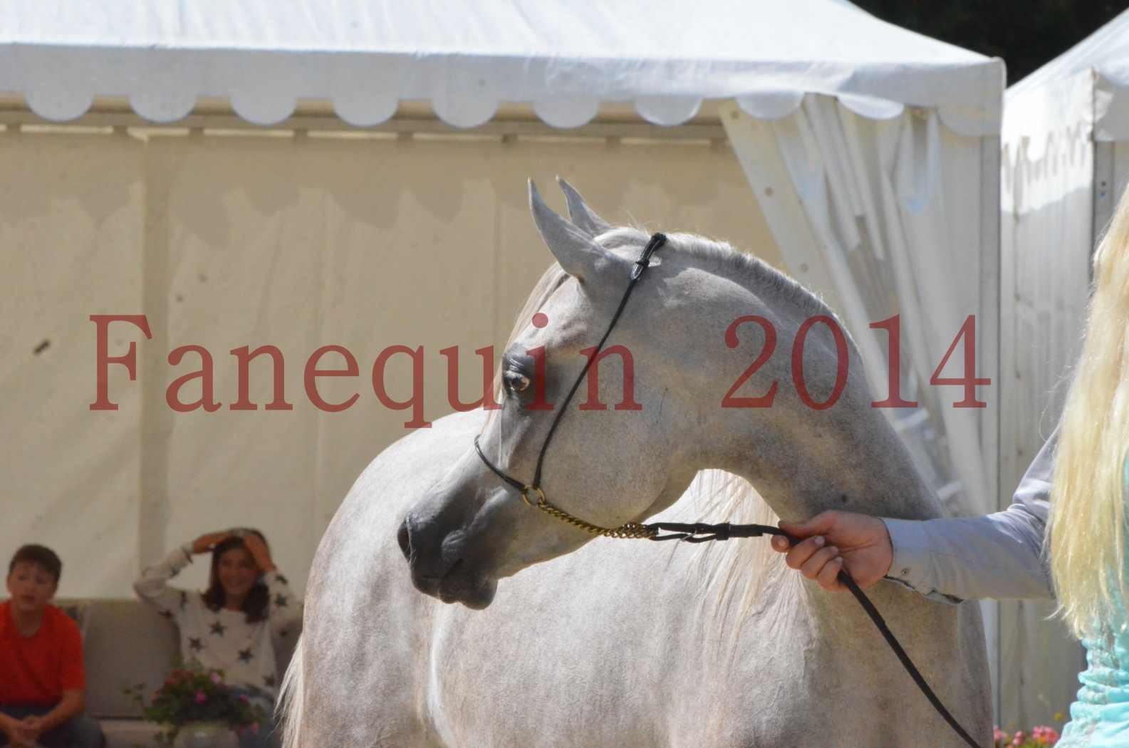 Championnat de FRANCE 2014 - Amateurs - VOLODIA DE LAFON - 091