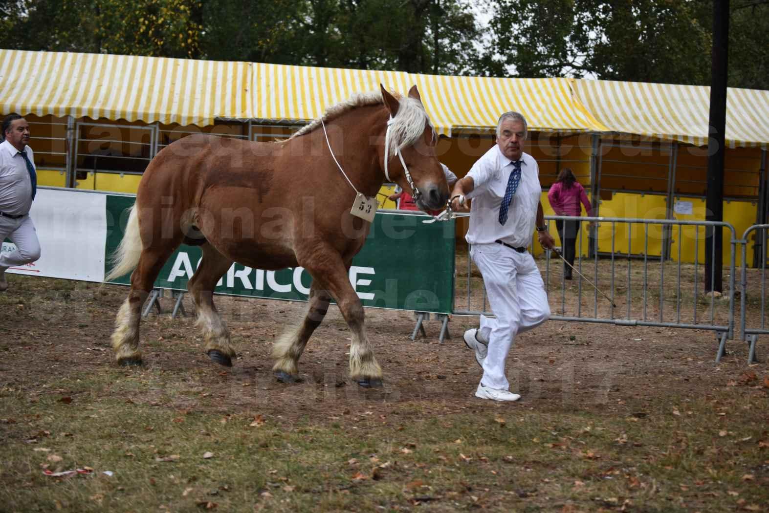 Concours Régional de chevaux de traits en 2017 - Jument & Poulain COMTOIS - BAILLA DU CLOS - 15