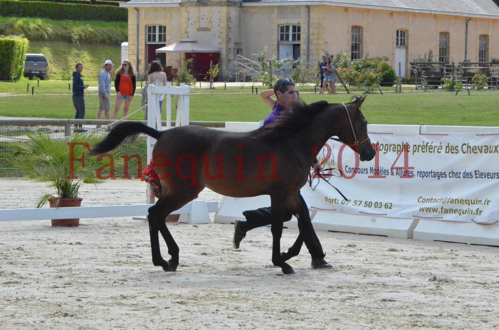 Championnat de FRANCE 2014 - Amateurs - SH FARAJAA - 13