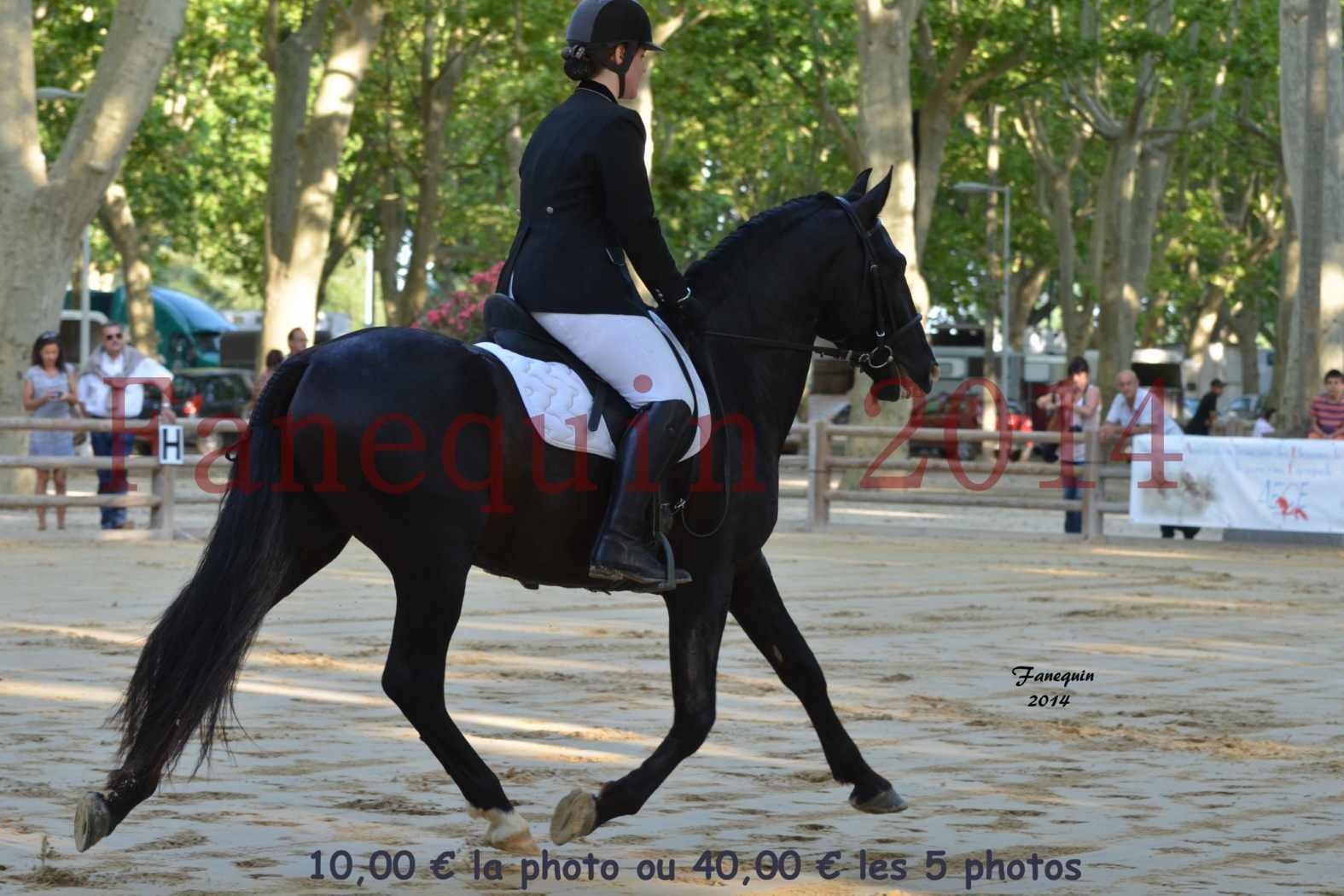 Championnat de FRANCE de PRE-présentation montés-01