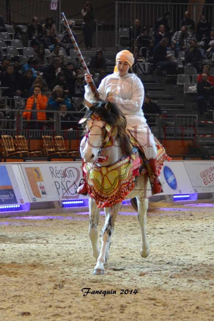 Show des races - Chevaux BARBE 32