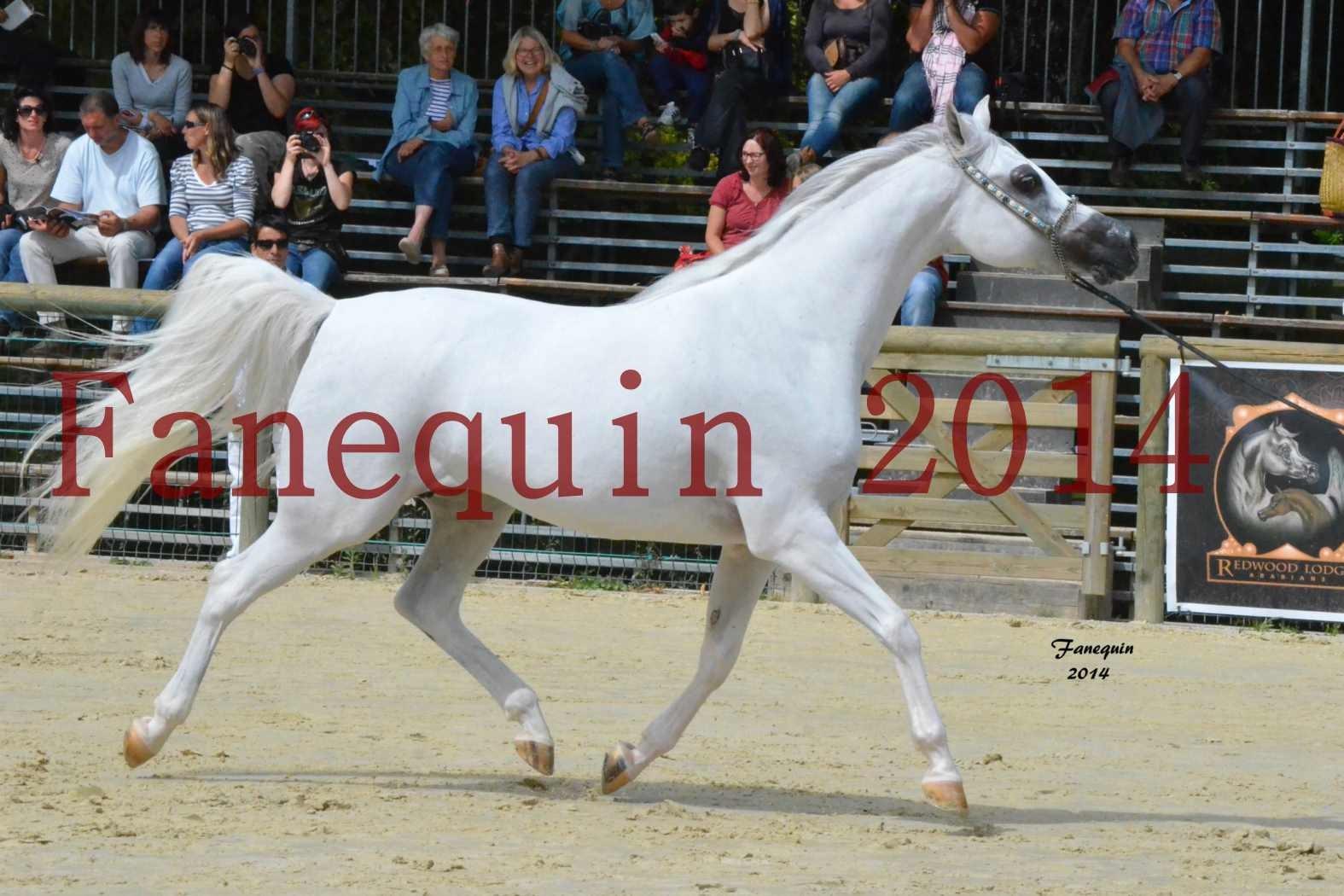 CHAMPIONNAT DE FRANCE 2014 A POMPADOUR - Notre Sélection - BLEUENN MILIN AVEL - 10
