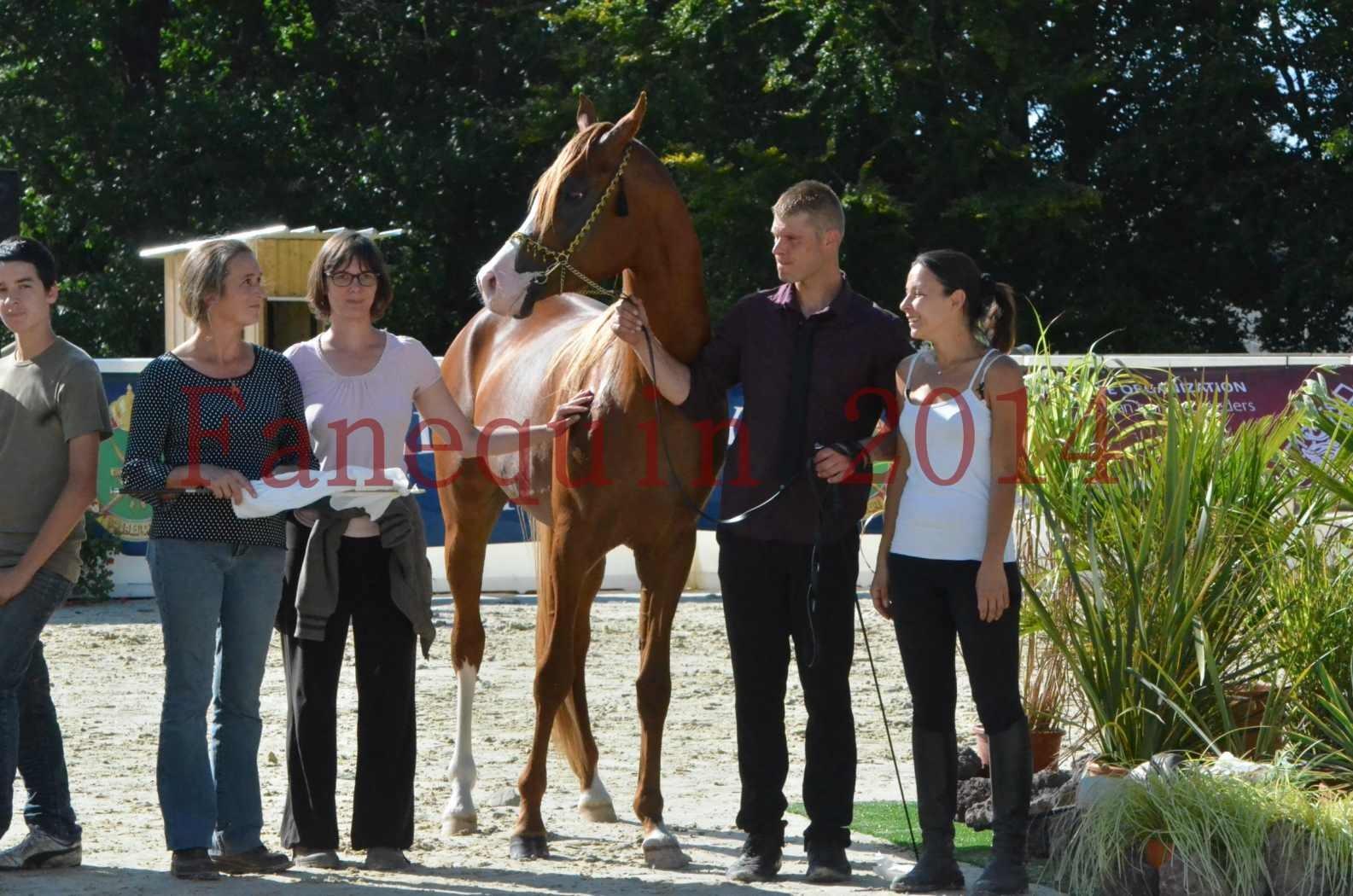 Championnat de FRANCE 2014 - Amateurs - SELECTO IBN SAMAWI - 090