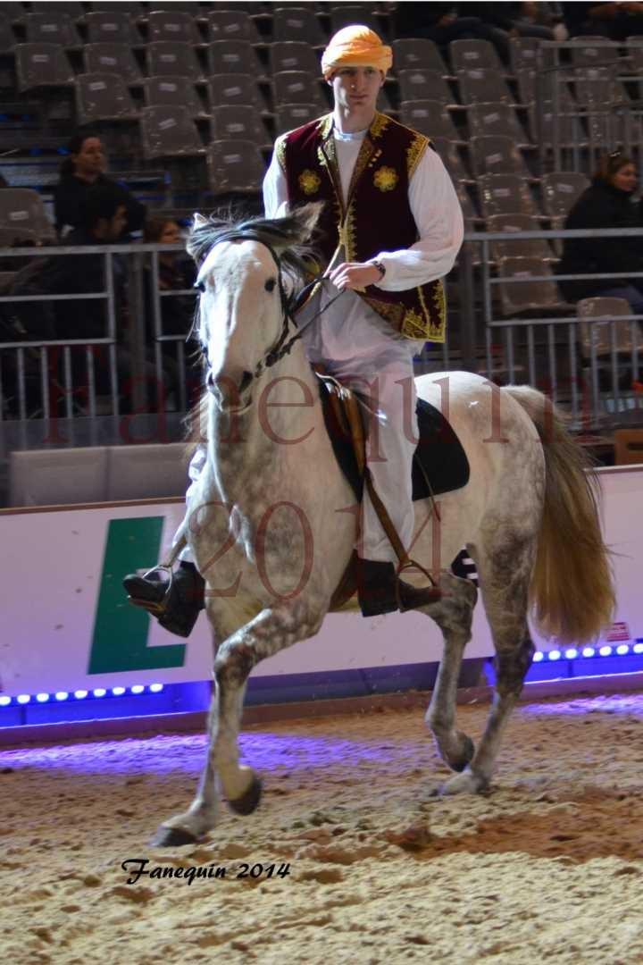 Show des races - Chevaux BARBE 33