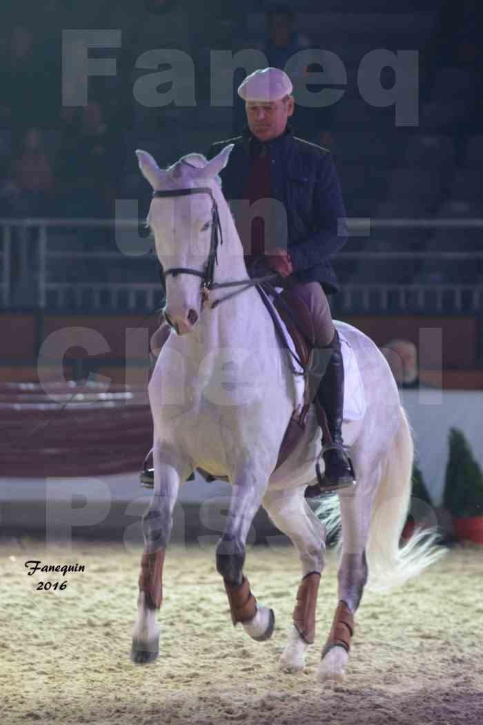 Cheval Passion 2016 - Présentation des LUSITANIENS - Ecurie de Max VENDRELL & Corinne BOUCHITTE - 05