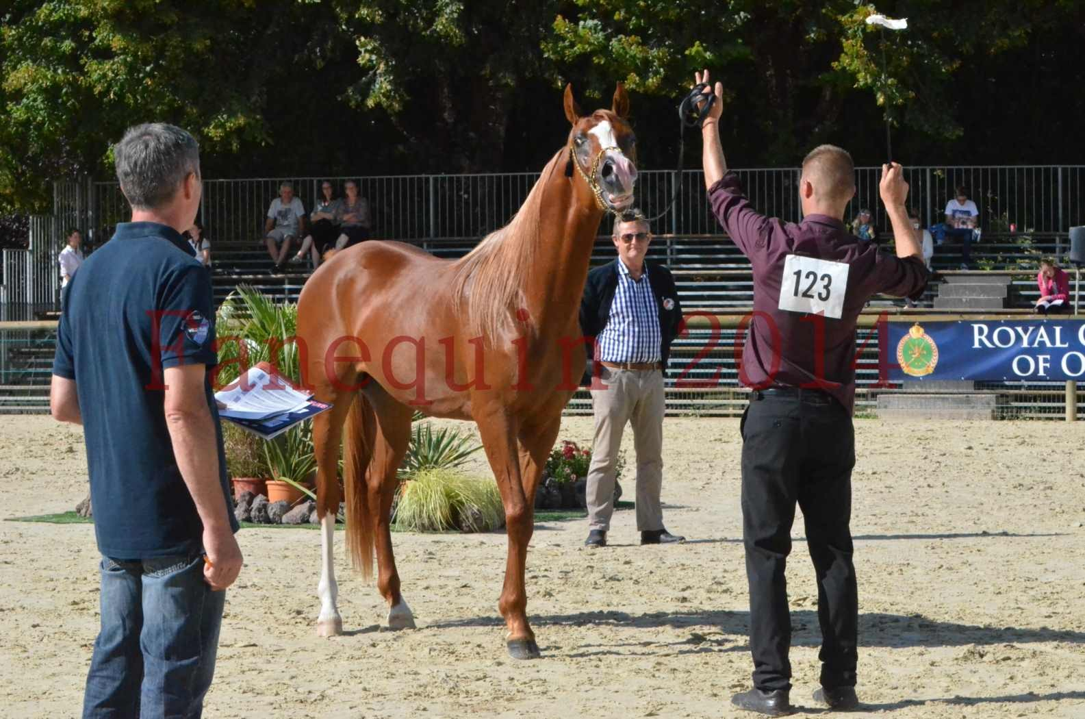 Championnat de FRANCE 2014 - Amateurs - SELECTO IBN SAMAWI - 068