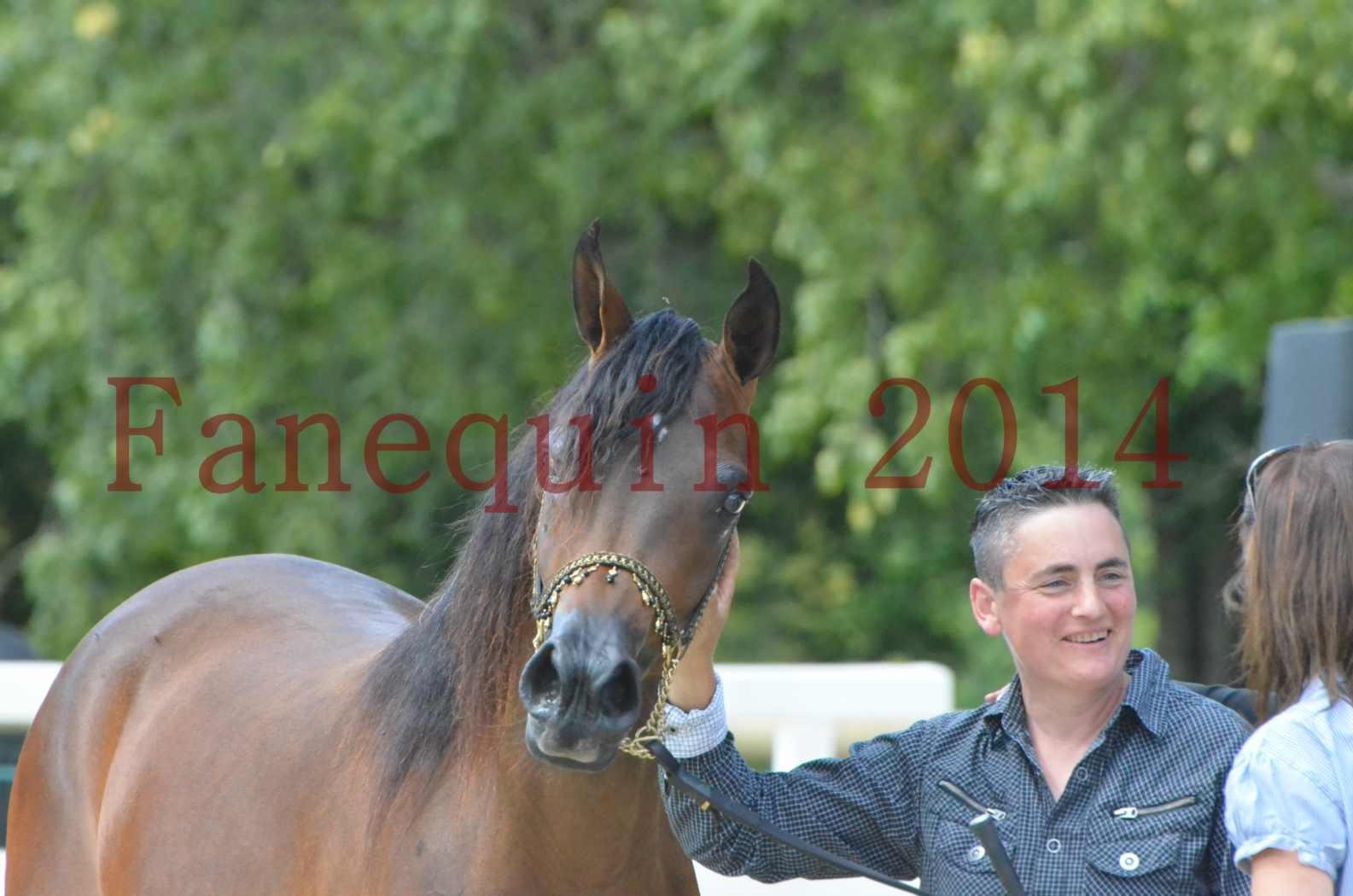 Championnat de FRANCE 2014 - Amateurs - KAL'ELLE D'ELHORIA - 93