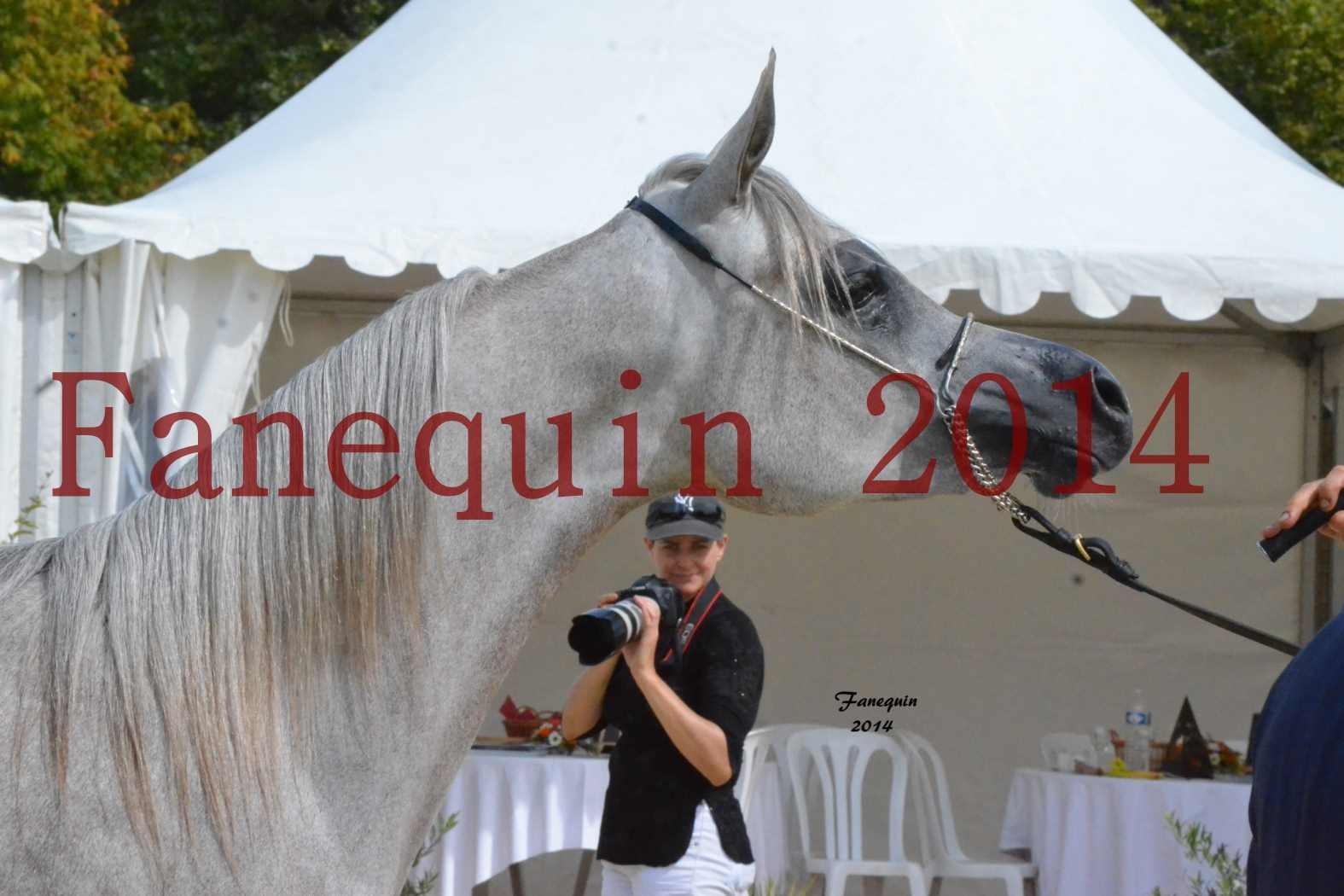 CHAMPIONNAT DE FRANCE 2014 A POMPADOUR - Notre Sélection - Portraits - BLEUENN MILIN AVEL - 3