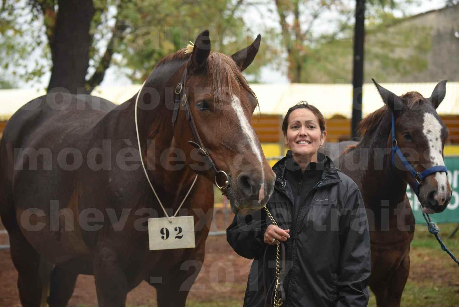 Concours Régional de chevaux de traits en 2017 - Jument Suitée - Trait BRETON - URIELLE DE LA MARGUE - 38