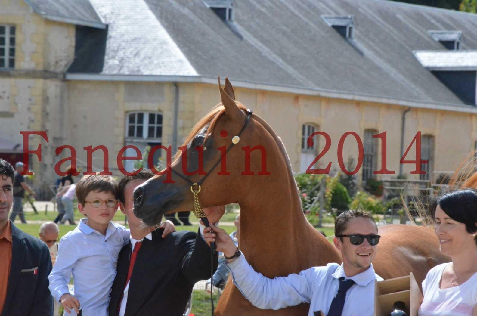 CHAMPIONNAT DE FRANCE 2014 A POMPADOUR - Championnat - LUTFINAH JA - 74