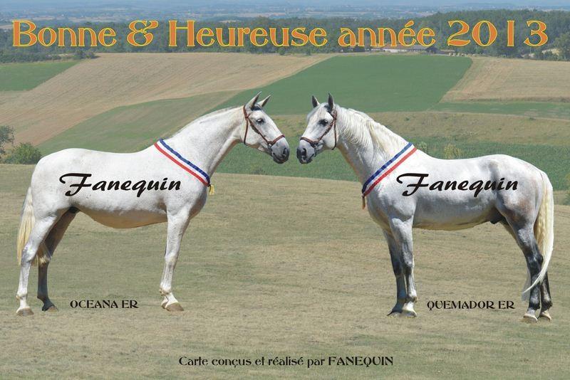 Carte bonne année chevaux espagnol