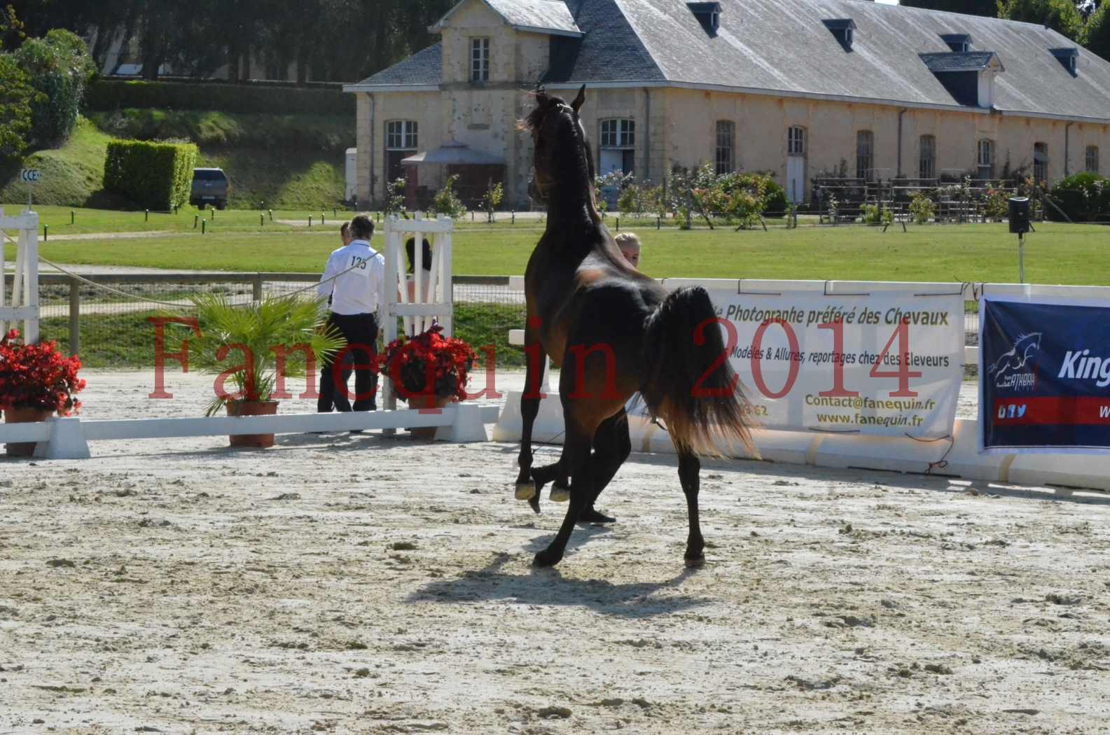 Championnat de FRANCE 2014 - Amateurs - JA KHALEB - 18