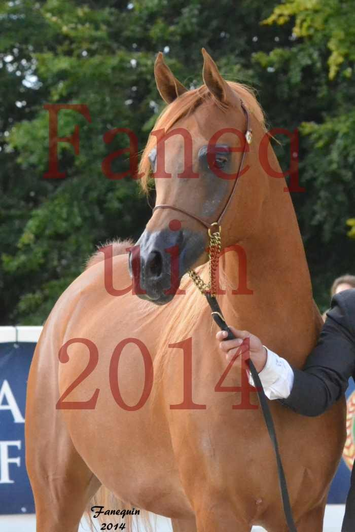 CHAMPIONNAT DE FRANCE 2014 A POMPADOUR - Notre Sélection - Portraits - LUTFINAH JA - 04