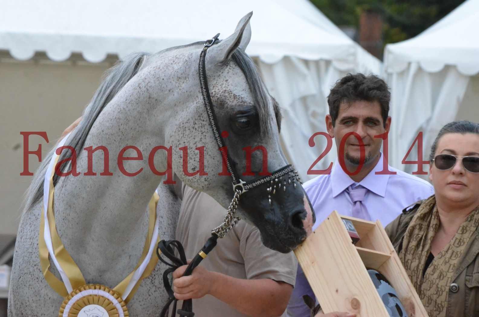 CHAMPIONNAT DE FRANCE  2014 A POMPADOUR - Championnat - SHEYK DE GARGASSAN - 29