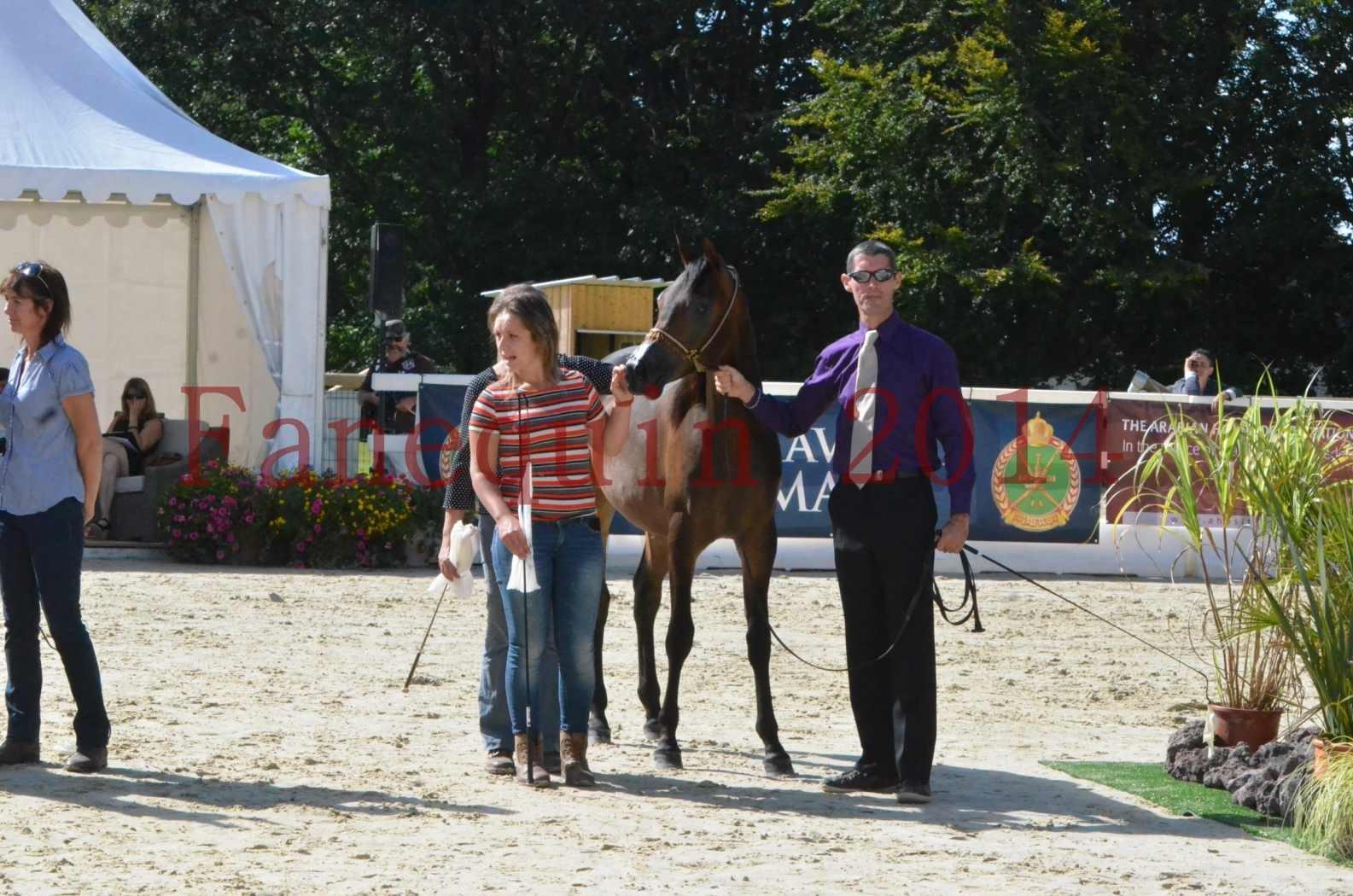 Championnat de FRANCE 2014 - Amateurs - SH FARAJAA - 54