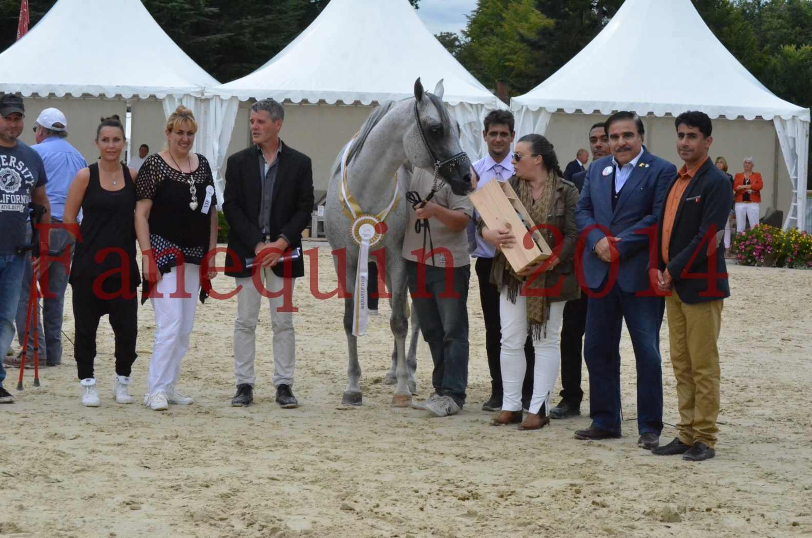 CHAMPIONNAT DE FRANCE  2014 A POMPADOUR - Championnat - SHEYK DE GARGASSAN - 32