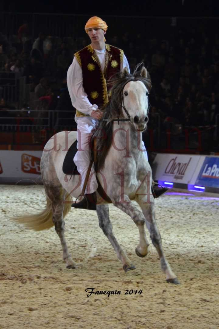 Show des races - Chevaux BARBE 19