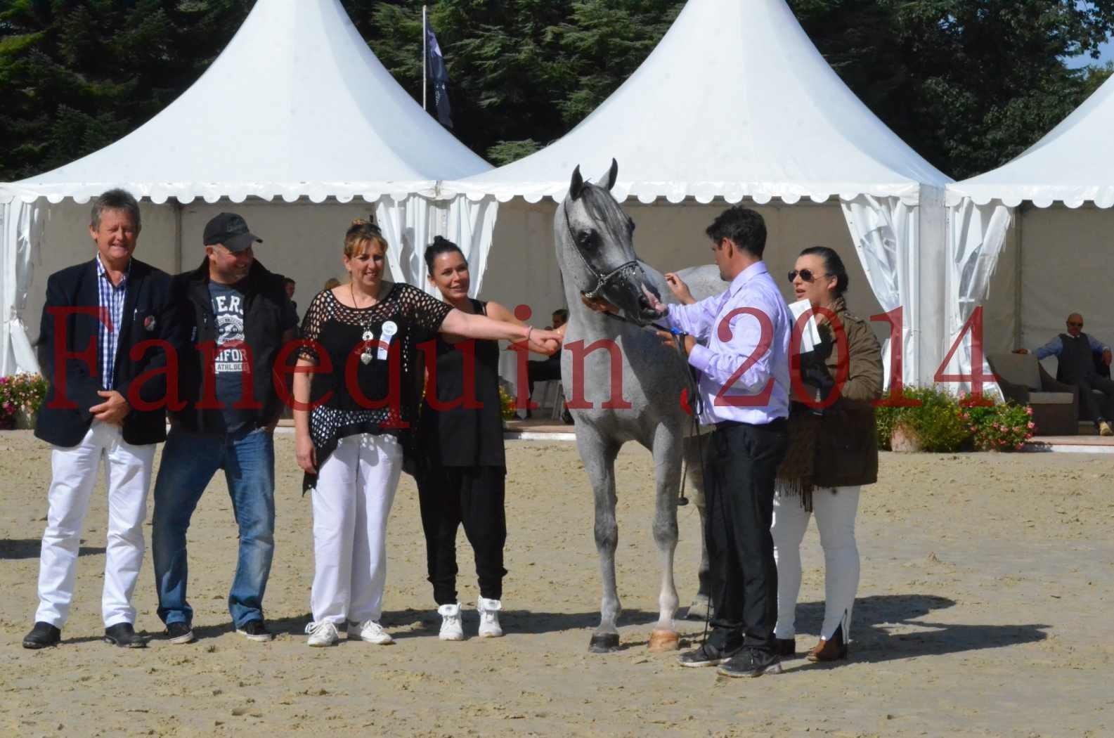 CHAMPIONNAT DE FRANCE  2014 A POMPADOUR - Sélection - SHEYK DE GARGASSAN - 21