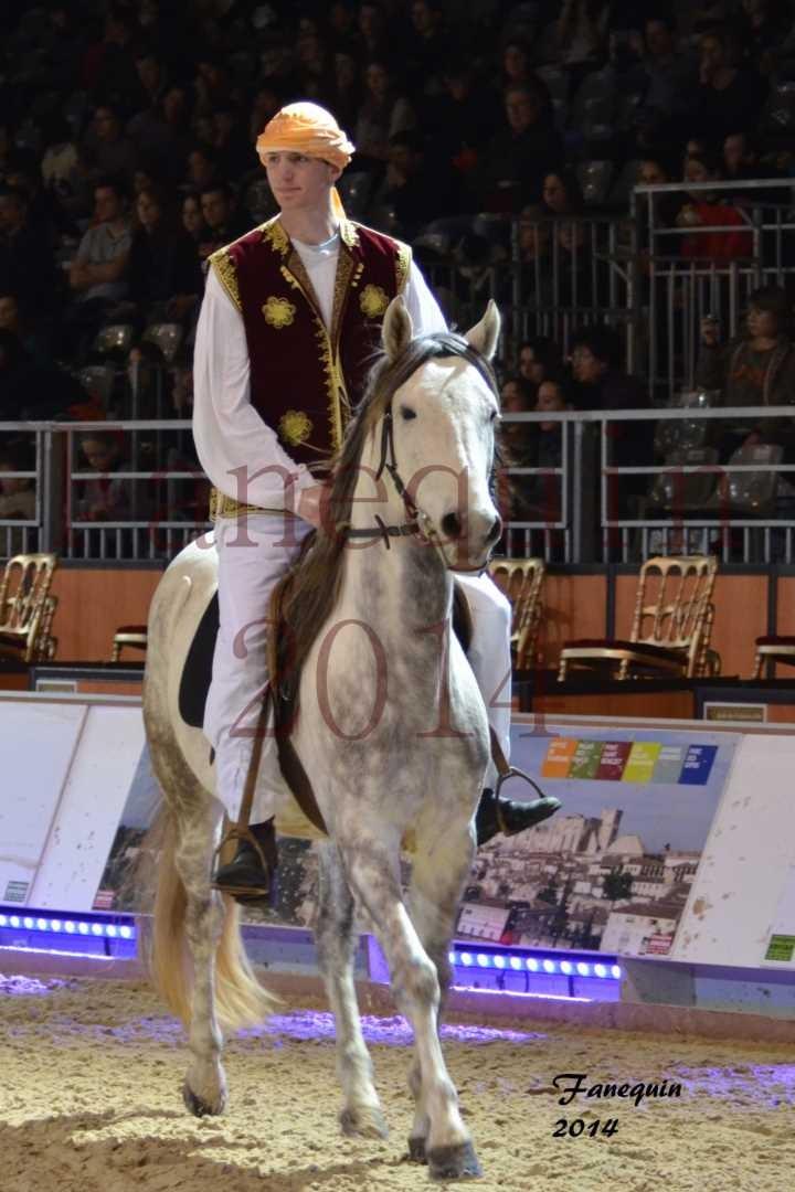 Show des races - Chevaux BARBE 09