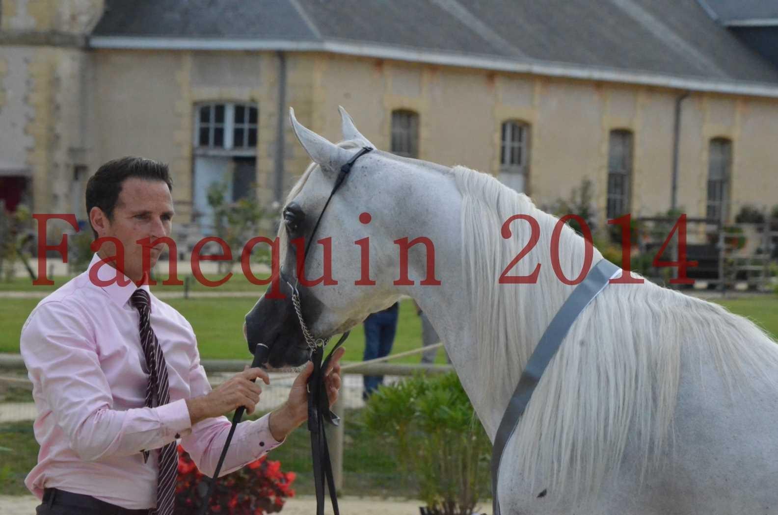 CHAMPIONNAT DE FRANCE 2014 A POMPADOUR - Championnat - FA STARLIGHT - 17