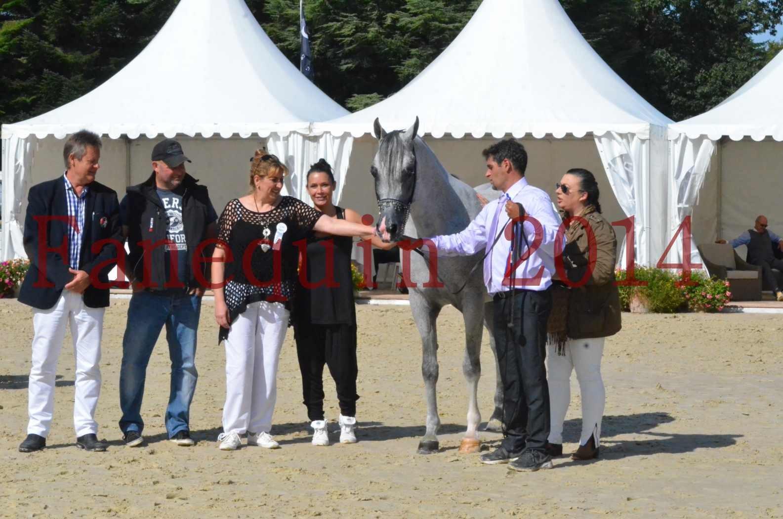 CHAMPIONNAT DE FRANCE  2014 A POMPADOUR - Sélection - SHEYK DE GARGASSAN - 22