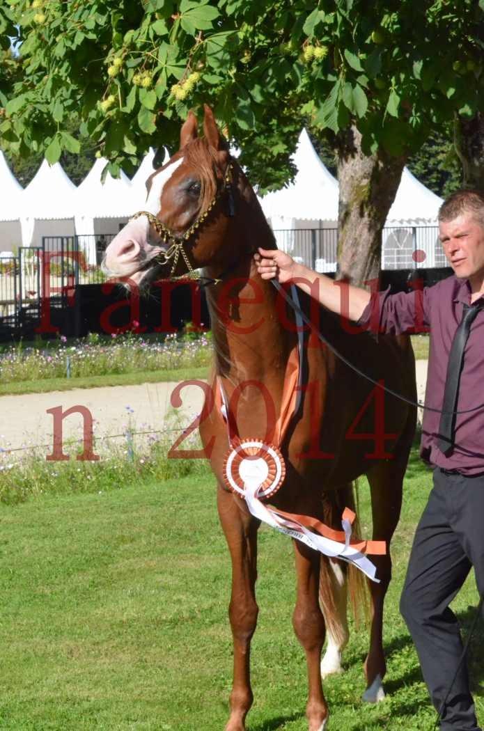 Championnat de FRANCE 2014 - Amateurs - SELECTO IBN SAMAWI - 204