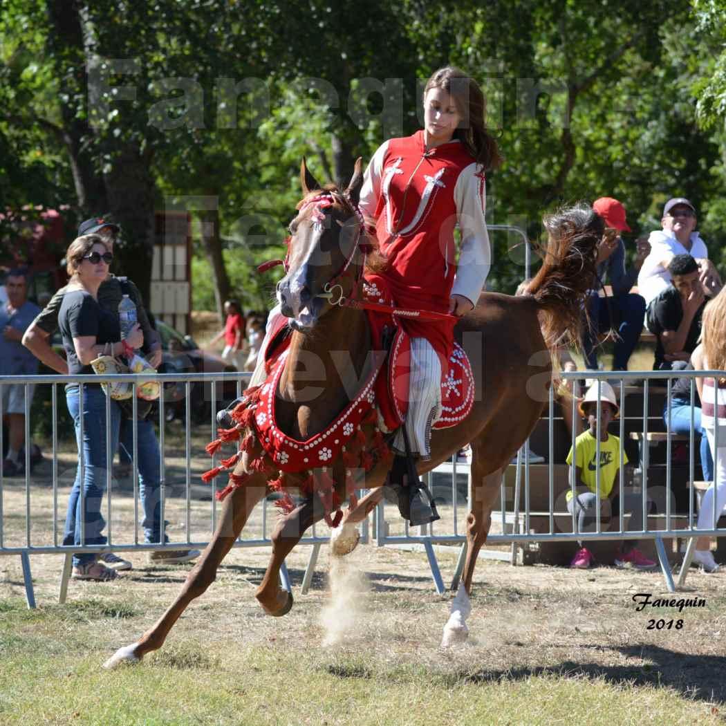Fête du cheval à GRAULHET le 16 septembre 2018 - Présentation de chevaux Arabe Elevage de GACIA - 10