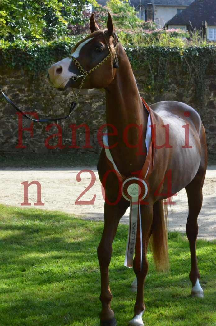 Championnat de FRANCE 2014 - Amateurs - SELECTO IBN SAMAWI - 177