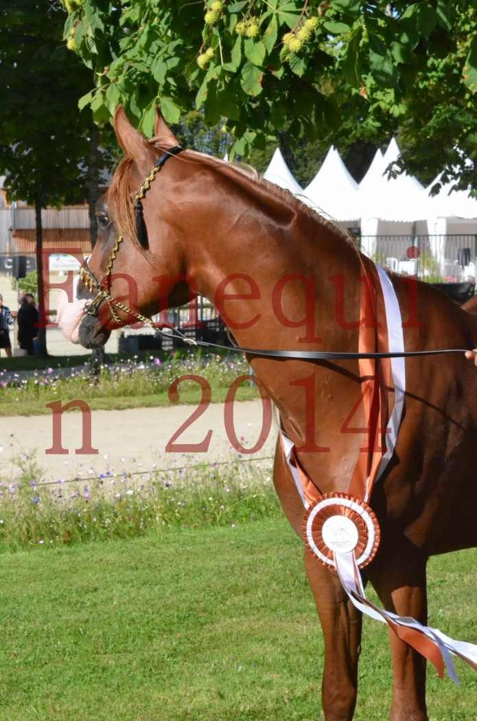 Championnat de FRANCE 2014 - Amateurs - SELECTO IBN SAMAWI - 195