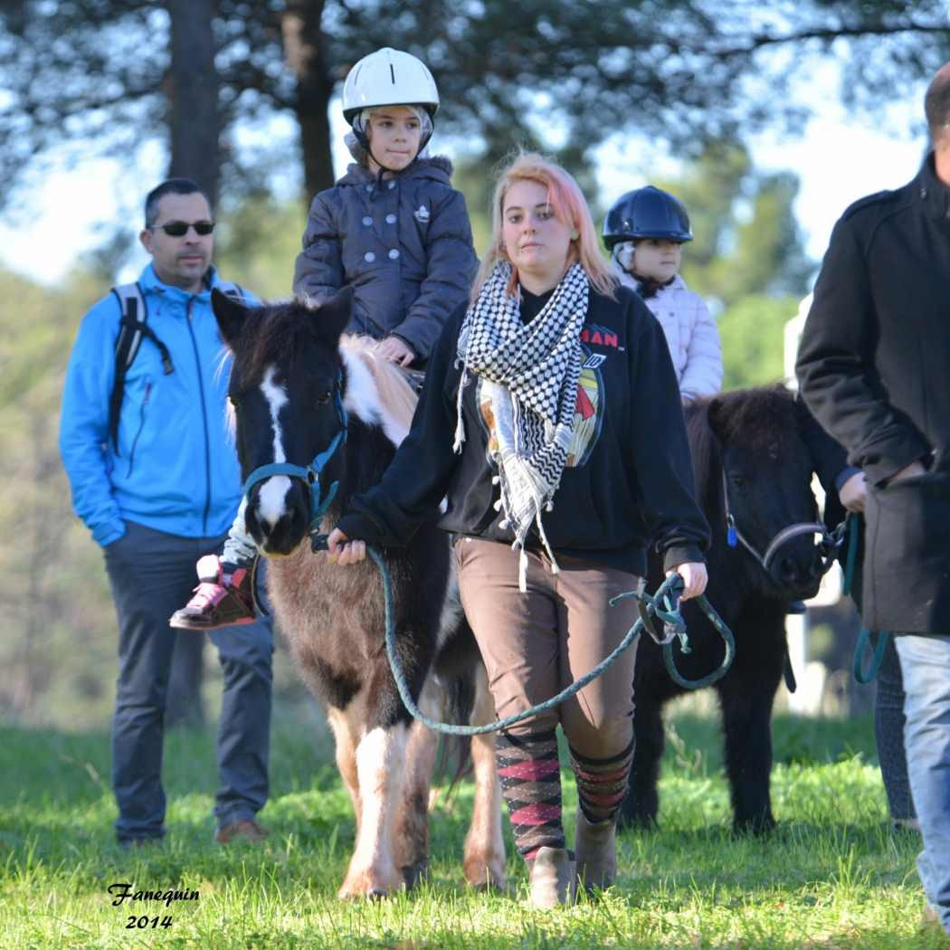 Marchés de Noël 2014 - Promenades en Poneys à Pignan - 24