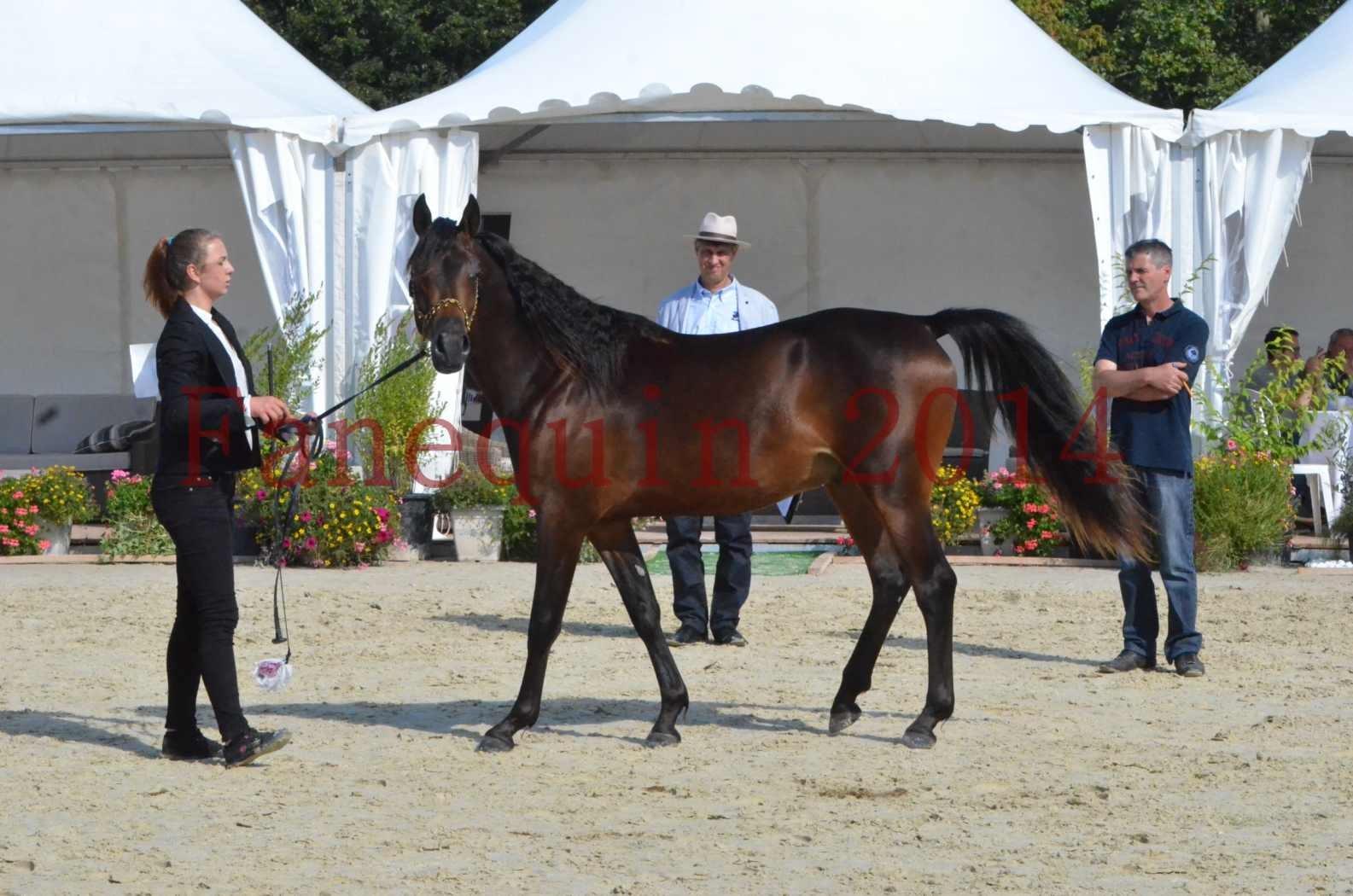 Championnat de FRANCE 2014 - Amateurs - JA KHALEB - 37
