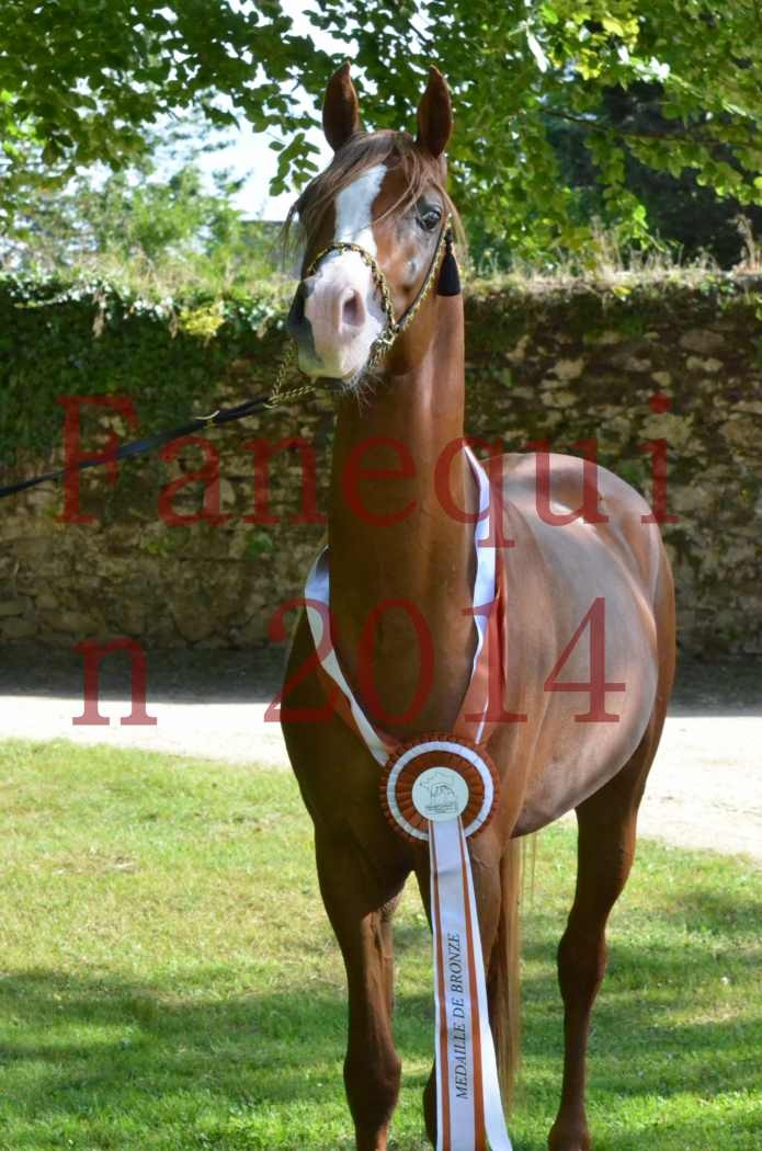 Championnat de FRANCE 2014 - Amateurs - SELECTO IBN SAMAWI - 173
