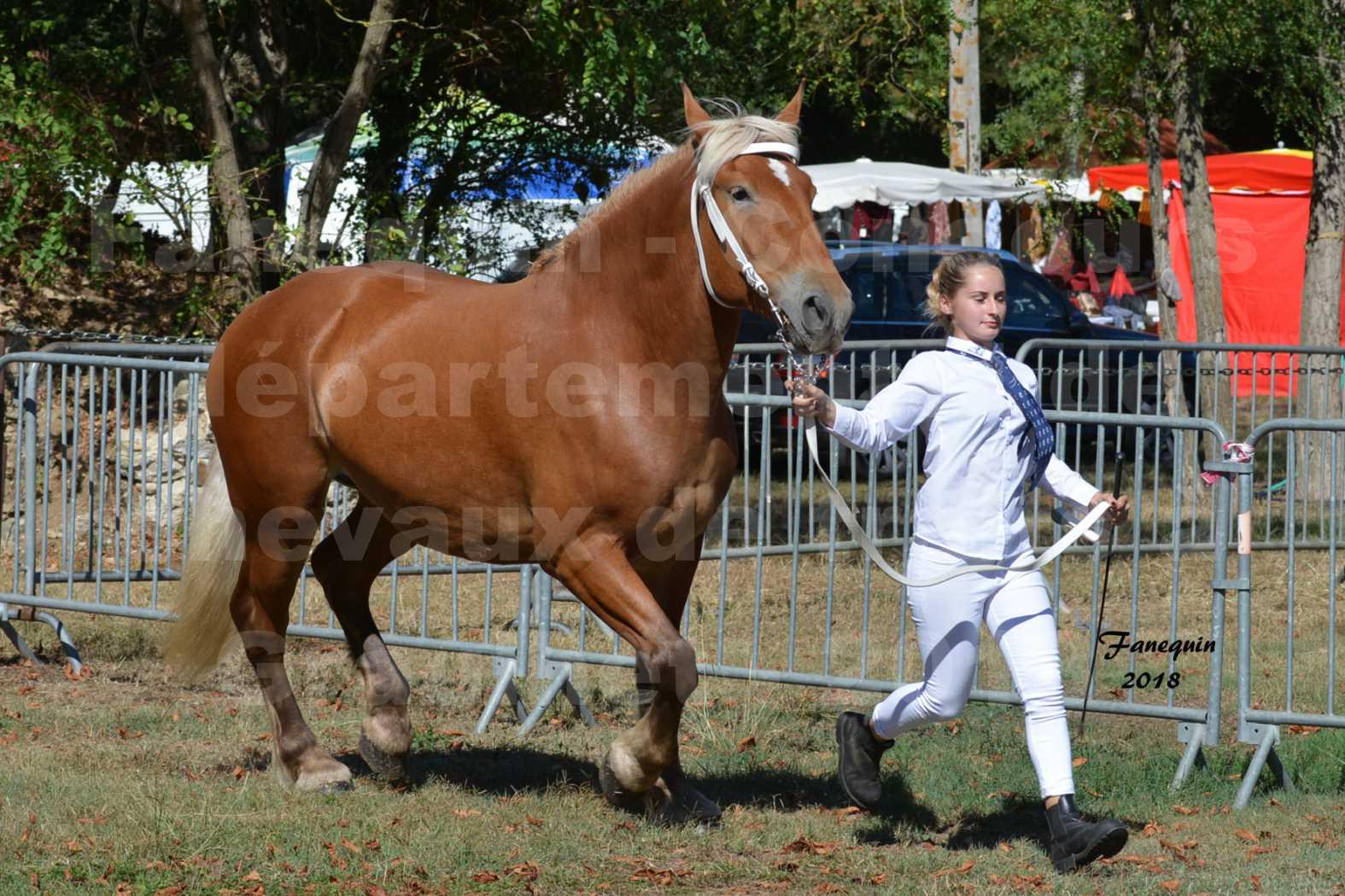 Concours départemental de chevaux de traits à GRAULHET en 2018 - Elevage POUJADE - Notre Sélection - 06