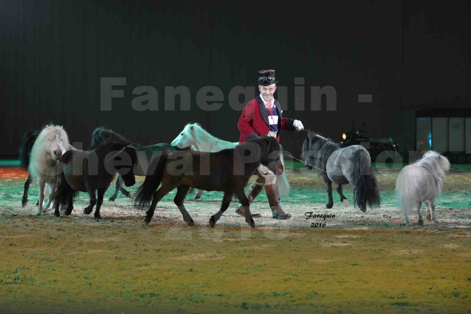 Cheval Passion 2016 - MISEC - Pierre FURIC - 3