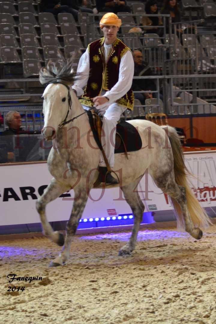 Show des races - Chevaux BARBE 31