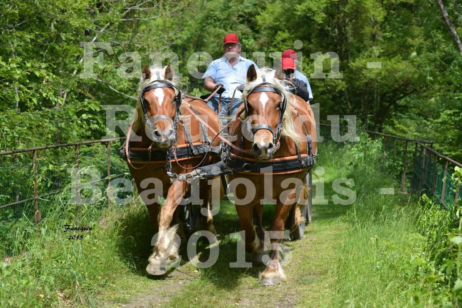 Route du Beaujolais 2015 - attelage ne paire - samedi après midi