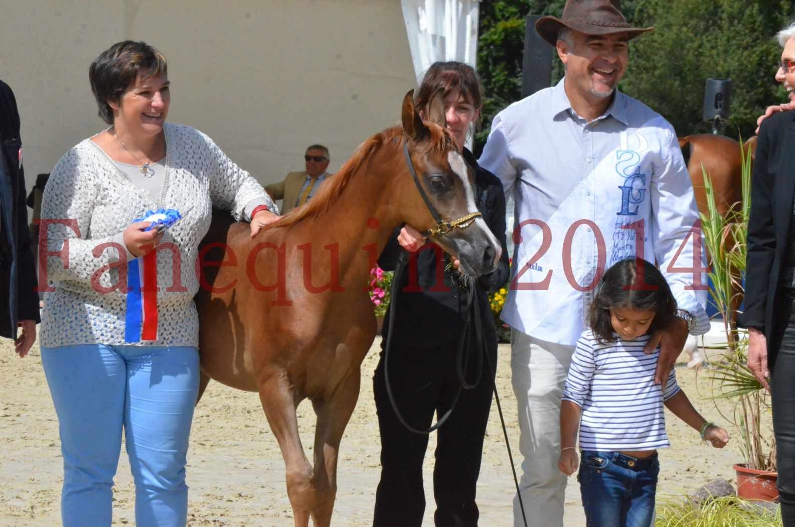 CHAMPIONNAT DE FRANCE 2014 A POMPADOUR - Championnat - TSAR KENZA - 96