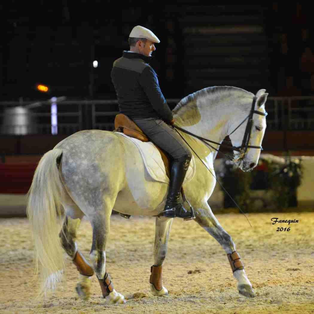 Cheval Passion 2016 - Présentation des LUSITANIENS - Ecurie de Max VENDRELL & Corinne BOUCHITTE - 38