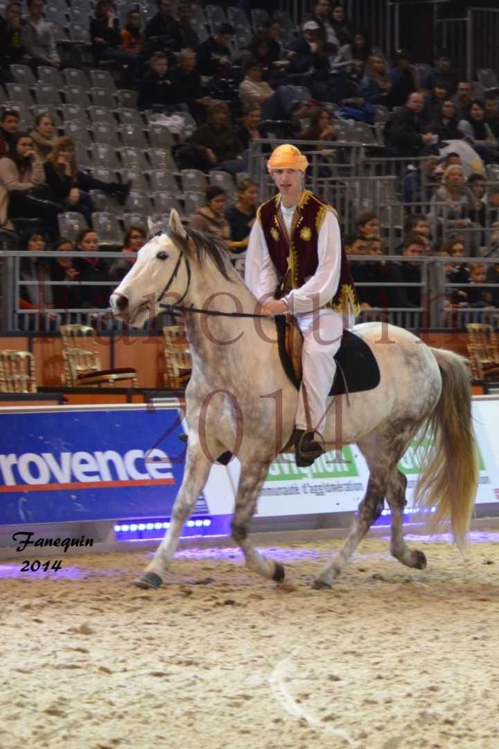 Show des races - Chevaux BARBE 21