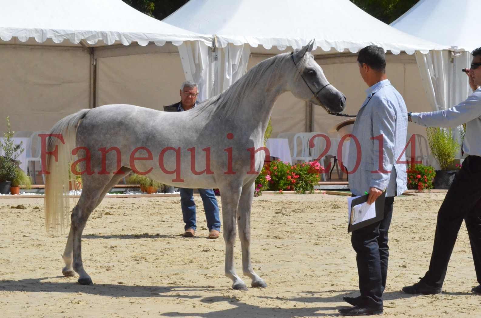Championnat de FRANCE 2014 - Amateurs - VOLODIA DE LAFON - 063