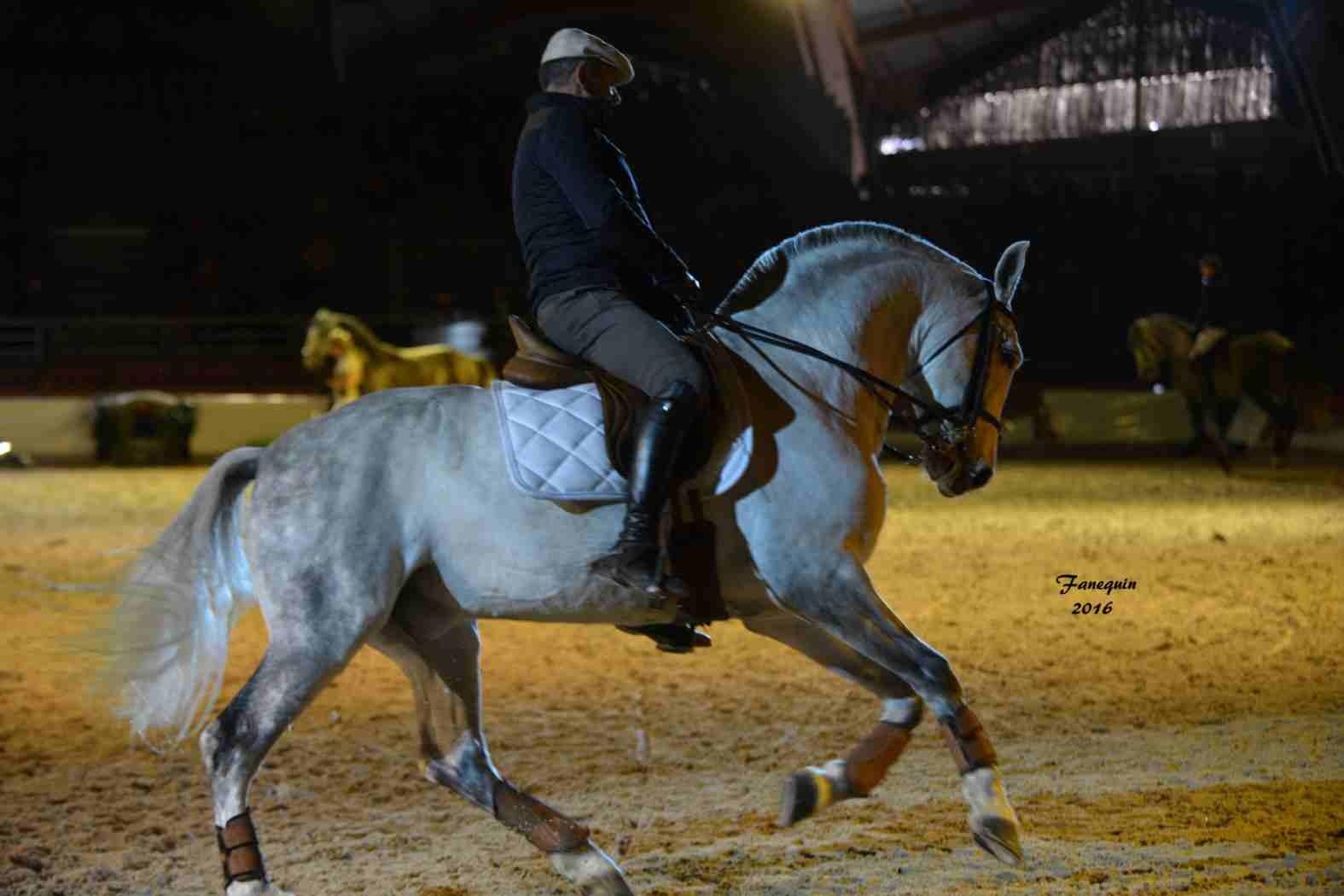 Cheval Passion 2016 - Présentation des LUSITANIENS - Ecurie de Max VENDRELL & Corinne BOUCHITTE - 40