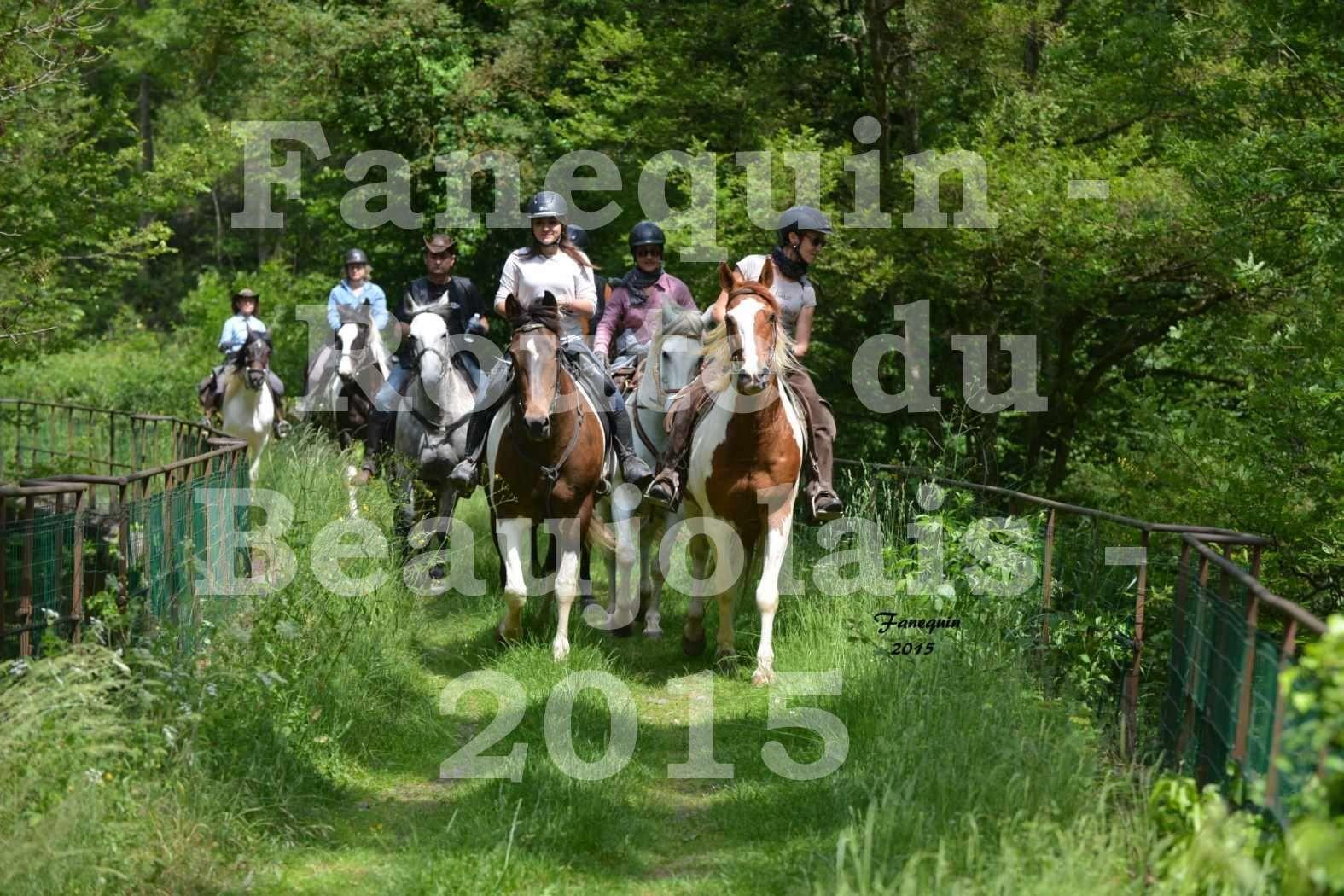 Route du Beaujolais 2015 - plusieurs cavaliers - samedi après midi - 1