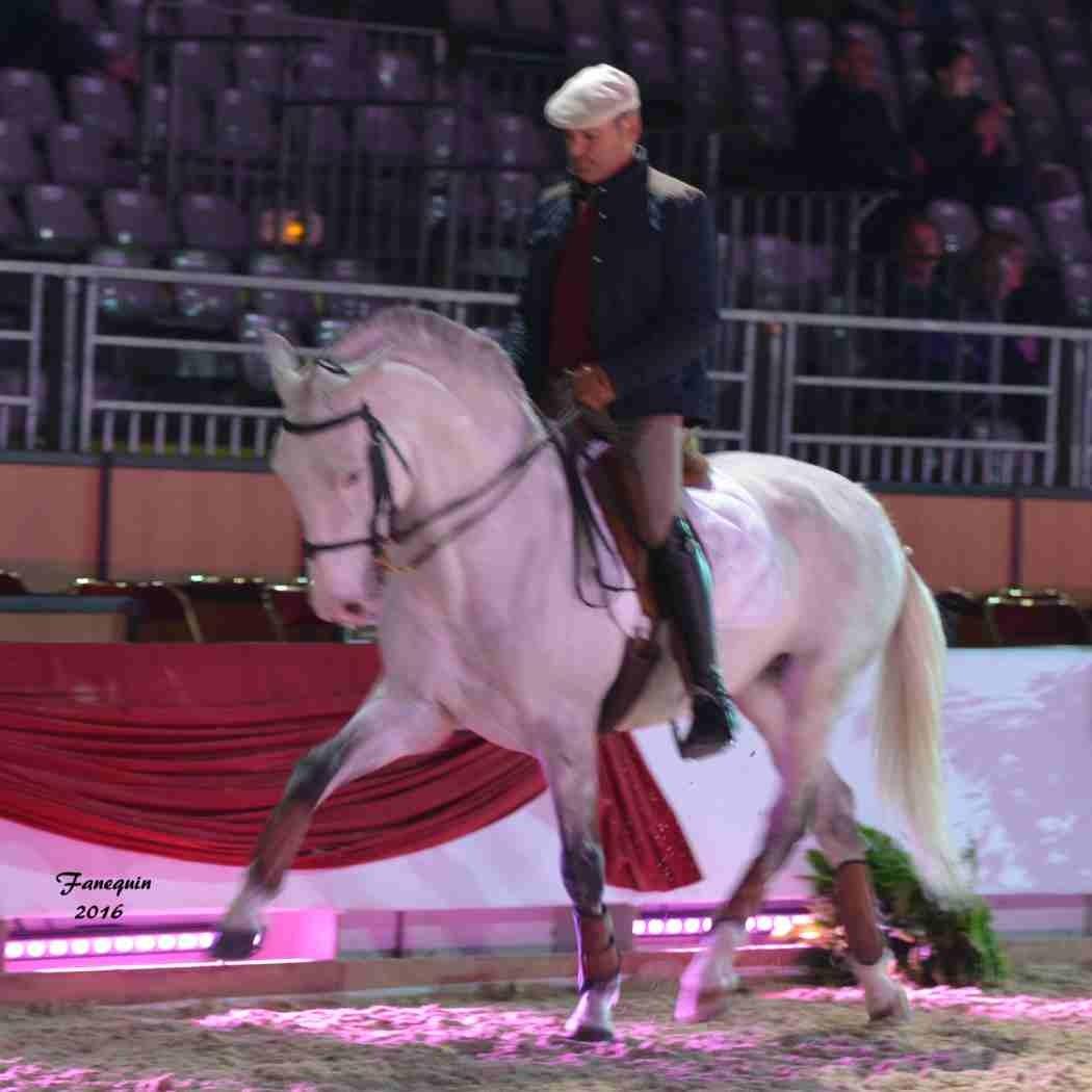 Cheval Passion 2016 - Présentation des LUSITANIENS - Ecurie de Max VENDRELL & Corinne BOUCHITTE - 15