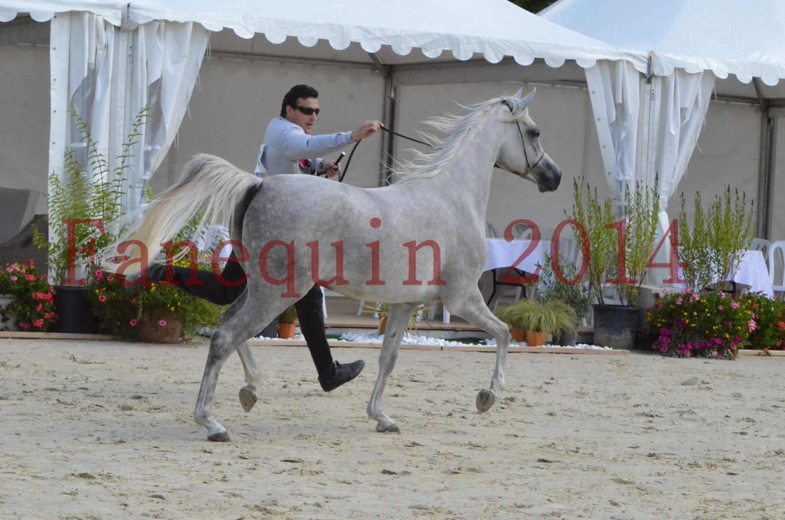 Championnat de FRANCE 2014 - Amateurs - VOLODIA DE LAFON - 014