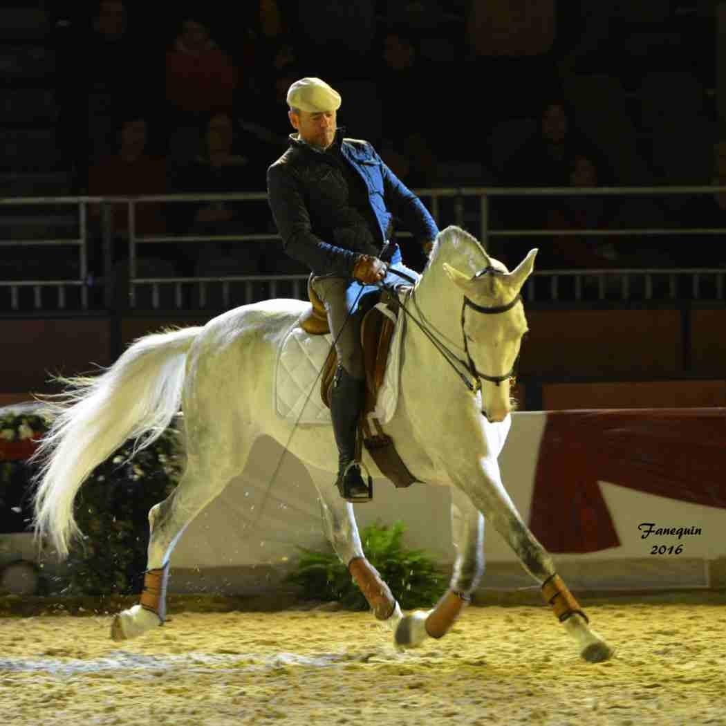 Cheval Passion 2016 - Présentation des LUSITANIENS - Ecurie de Max VENDRELL & Corinne BOUCHITTE - 21