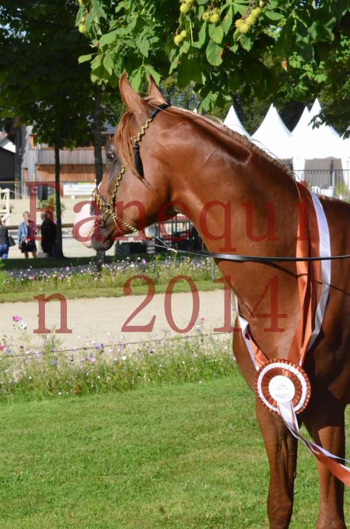 Championnat de FRANCE 2014 - Amateurs - SELECTO IBN SAMAWI - 199