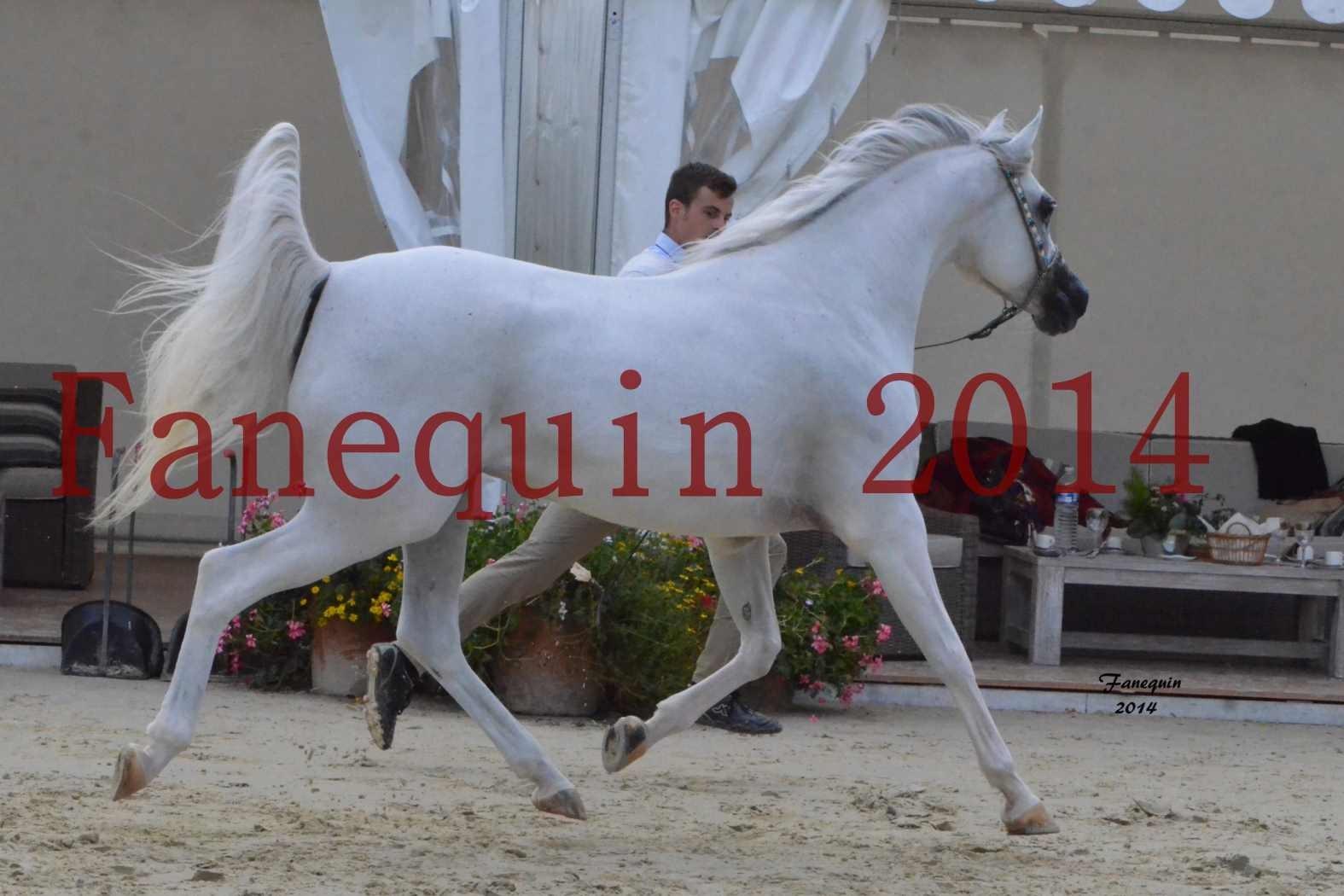 CHAMPIONNAT DE FRANCE 2014 A POMPADOUR - Notre Sélection - BLEUENN MILIN AVEL - 01